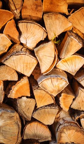 Yakacak Kuru Çam Odunu Kategori Görseli